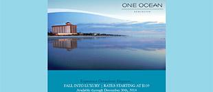 Milestone Inc. - Hotel Email Marketing Portfolio