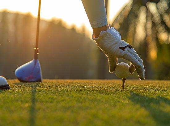 Single source golf solution - Milestone Inc.