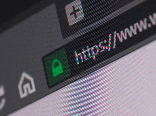 Backlinks Analysis from Milestone Insights